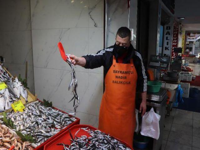 Çanakkale balık piyasası hareketli