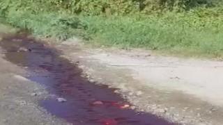 Arnavutköy'de kesilen kurbanların kanı Sazlıdere Barajı'na aktı