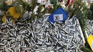 İstanbul'da av sezonunun bereketli başlaması balık fiyatlarına da yansıdı