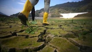 """İklim değişikliğinin sağlık üzerindeki etkileri """"hiç durmadan"""" artıyor"""