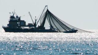 Somali, kara sularında kaçak balıkçılığa izin vermeyeceğini açıkladı